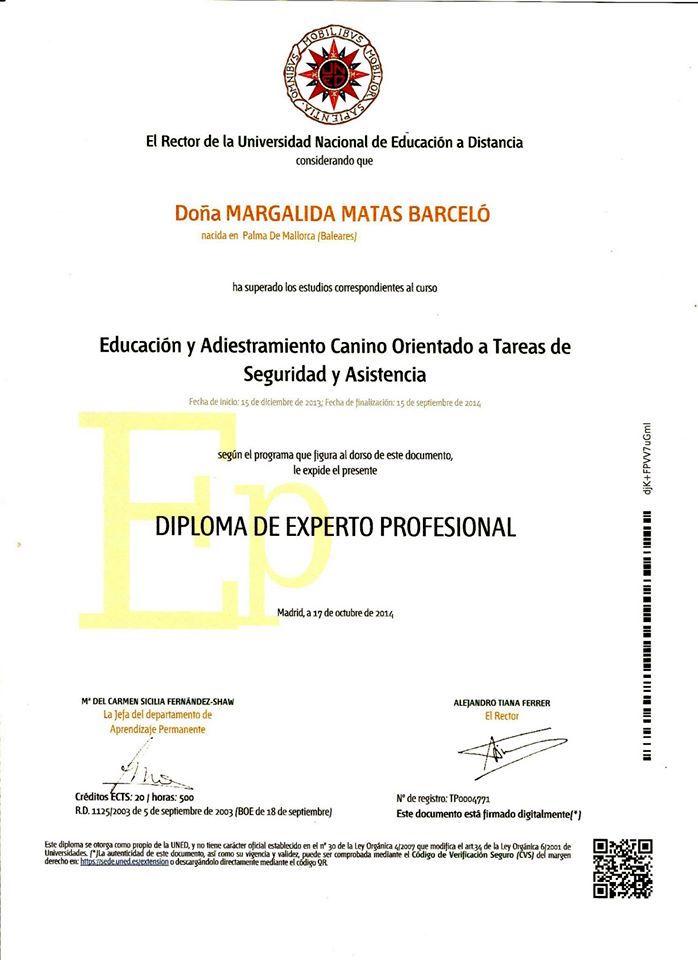 Diploma Experto Profesional por la UNED FNA tachada
